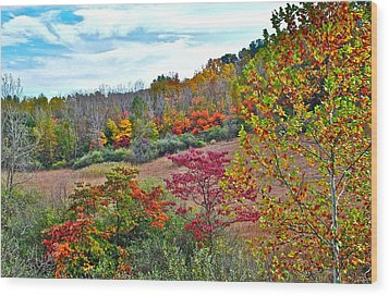 Autumnal Vista Wood Print by Frozen in Time Fine Art Photography