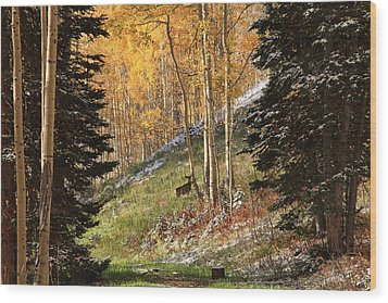 Autumn's Blessing Wood Print by Gene Praag