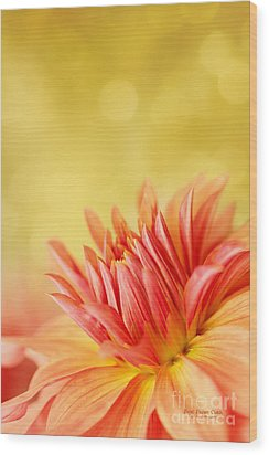 Autumns Calling Card Wood Print by Beve Brown-Clark Photography