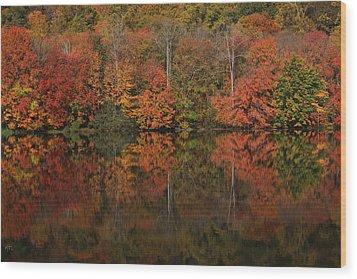Autumns Design Wood Print by Karol Livote