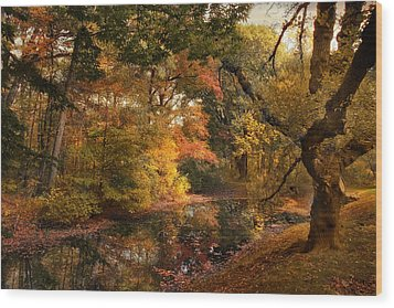 Wood Print featuring the photograph Autumn's Edge by Jessica Jenney
