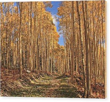 Autumn's Embrace Wood Print by Gene Praag