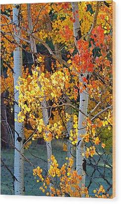 Autumn's Fire Wood Print by Jim Garrison