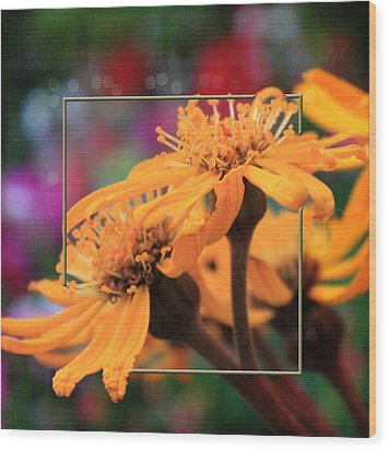 Wood Print featuring the photograph Autumn's Glory by Sandra Foster