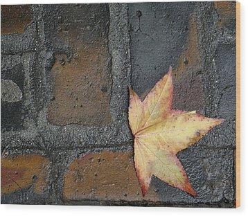 Autumn's Leaf Wood Print