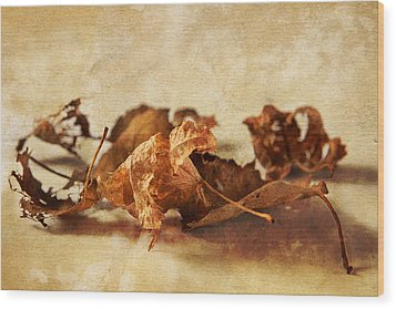 Autumn's Leavings Wood Print by Caitlyn  Grasso