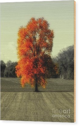Autumn's Living Tree Wood Print