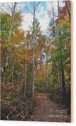 Autumn's Path Wood Print by Gina Savage
