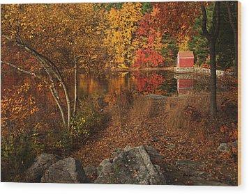 Autumns Path Wood Print by Karol Livote