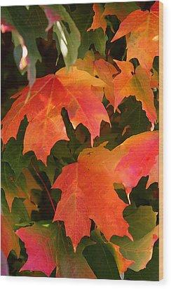 Autumn's Peak Wood Print by Paula Tohline Calhoun