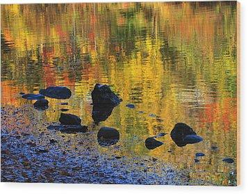 Autumns Rainbow Wood Print by Karol Livote