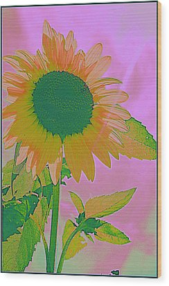 Autumn's Sunflower Pop Art Wood Print by Dora Sofia Caputo Photographic Art and Design