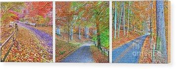 Autumns Way Wood Print by John Kelly
