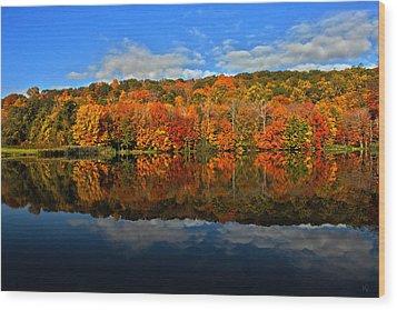 Autumnscape Wood Print by Karol Livote