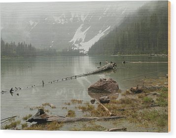 Avalanche Glacier National Park Wood Print by Jeff Swan