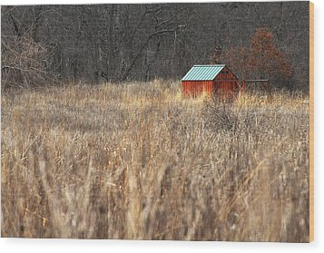 Avalon Preserve Stony Brook New York Wood Print