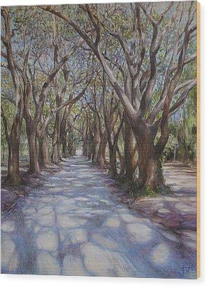 Avenue Of The Oaks Wood Print by Henry David Potwin