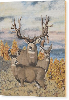 Avery Buck Wood Print