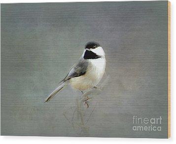 Awaiting Spring Wood Print by Brenda Bostic