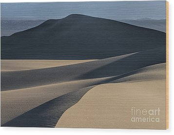 Awakening  Wood Print by Sandra Bronstein