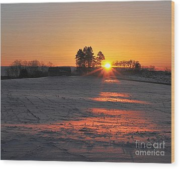 Wood Print featuring the photograph Awakening by Terri Gostola