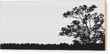 Ayahuasca Wood Print by Matti Ollikainen