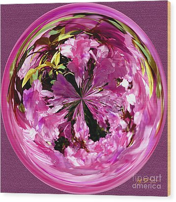 Azalea Orb IIi Wood Print by Jeff McJunkin