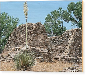 Aztec Ruins National Monument Wood Print by Laurel Powell