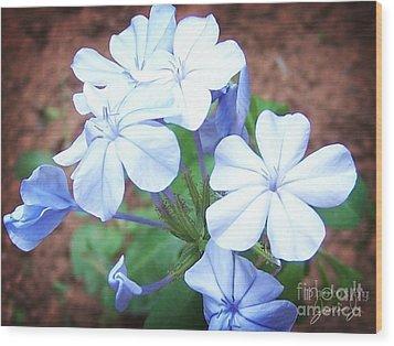 Azure Aura Wood Print