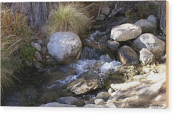 Babbling Brook Wood Print by Barbara Snyder