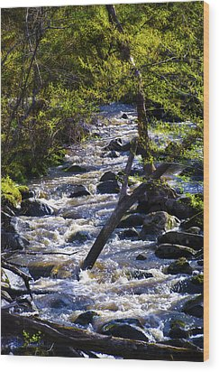 Babbling Brook Wood Print by Bill Cannon