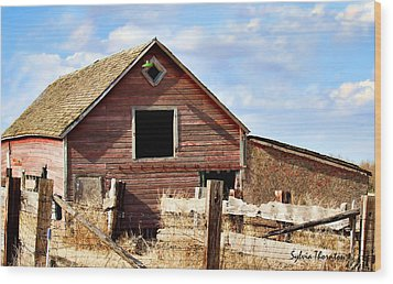 Wood Print featuring the photograph Baby Barn by Sylvia Thornton