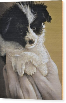 Baby Boy - Pastel Wood Print by Ben Kotyuk