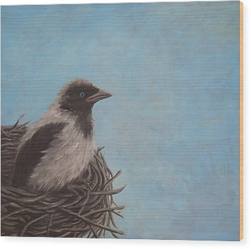 Baby Crow Wood Print