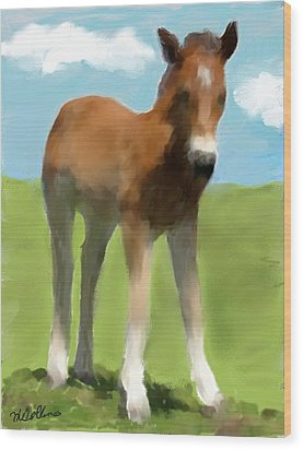 Baby Horse Wood Print