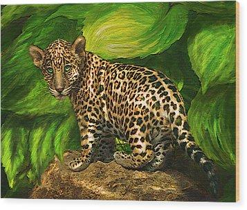 Baby Jaguar Wood Print by Jane Schnetlage
