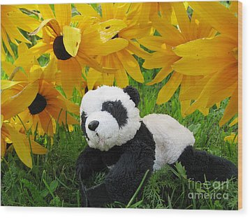 Wood Print featuring the photograph Baby Panda Under The Golden Sky by Ausra Huntington nee Paulauskaite