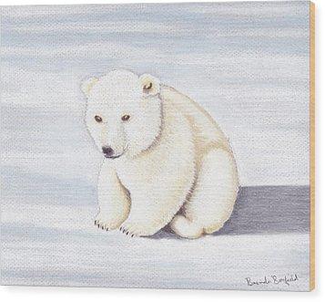 Baby Polar Bear Wood Print by Brenda Bonfield