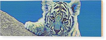 Baby Tiger- Blue Wood Print by Jane Schnetlage