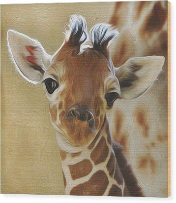 Baby Zara Wood Print by Jewels Blake Hamrick