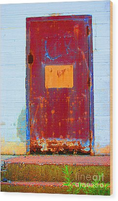 Wood Print featuring the photograph Back Door by Christiane Hellner-OBrien