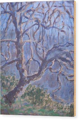 Back-lit Tree At Washington Park Wood Print