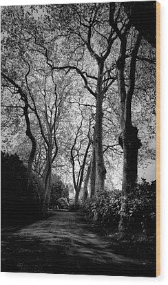 Back Road West Wood Print