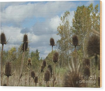 Wood Print featuring the photograph Back To Nature by Deborah DeLaBarre