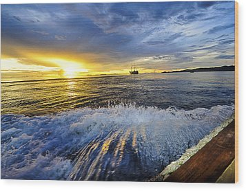 Back To The Boat Wood Print by Terry Cosgrave