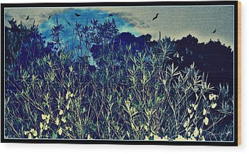 Back Yard Sky Wood Print by YoMamaBird Rhonda