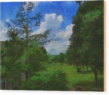 Back Yard View Wood Print by Jeffrey Kolker