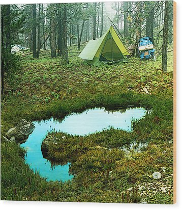 Backcountry Camp Wood Print by Ric Soulen
