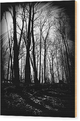 Backdunes In April Wood Print by Michelle Calkins