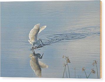 Backlit Reflection Wood Print